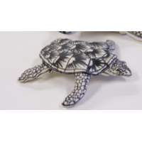 Katharine Morling, Small turtle