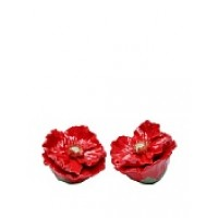 Handmade Porcelain Poppy salt and pepper shaker set, Red